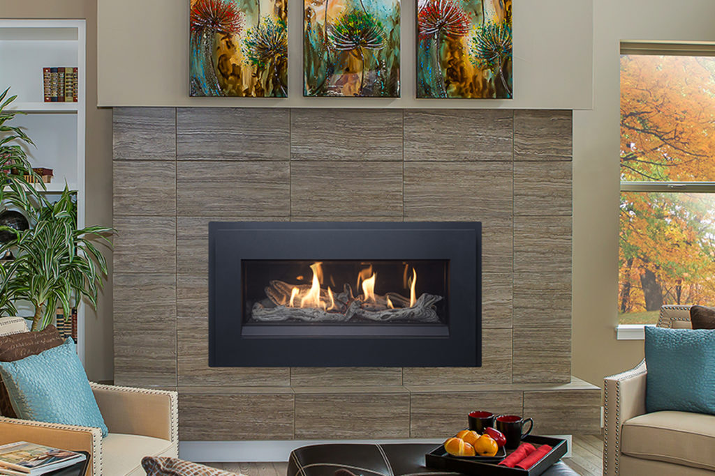 Pacific Energy Esprit Gas Fireplace